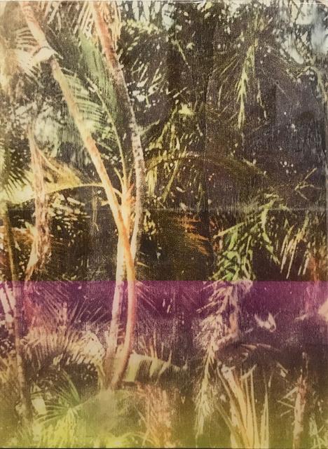 Ernesto Cánovas, 'Botanic XXXIII', 2017, Ambacher Contemporary