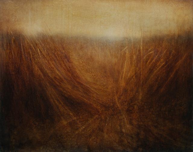 , 'Grasslands / Partition,' 2016, Barbara Frigerio Contemporary