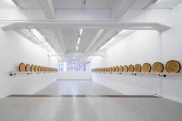 , 'Cedar,' 2015, Andréhn-Schiptjenko