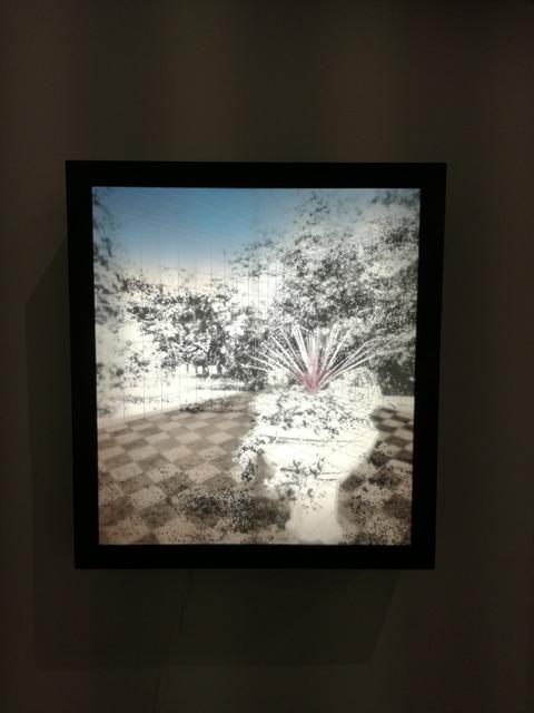 , 'Designed Nature,' 2018, Ani Molnár Gallery