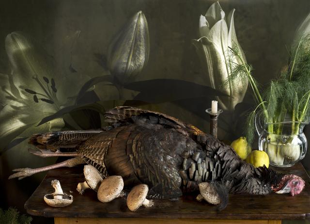 Vera Mercer, 'Wild Turkey', 2011, Galerie Jordanow