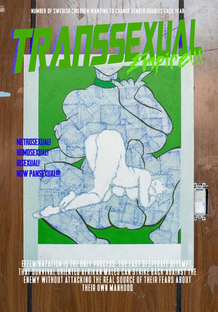 , 'Transsexual Empire,' 2017, CFHILL