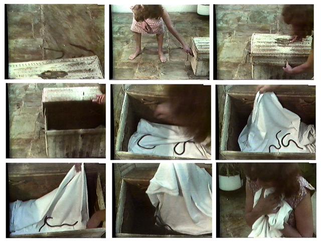 , 'Nordeste,' 1981, Galeria Jaqueline Martins