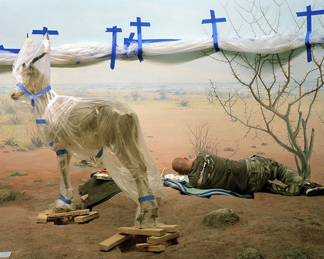 Richard Barnes, 'Single Ungulate and Man Amid Blue Crosses', 2008, Bau-Xi Gallery