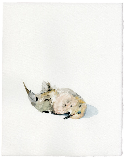 , 'Untitled (Roadkill Series 2),' 2014, Subliminal Projects