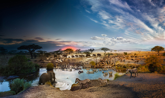, 'Serengeti, National Park, Tanzania (Day to Night),' 2015, Holden Luntz Gallery