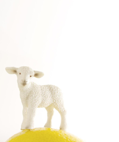 , 'Lemon Lamb,' , ArtStar