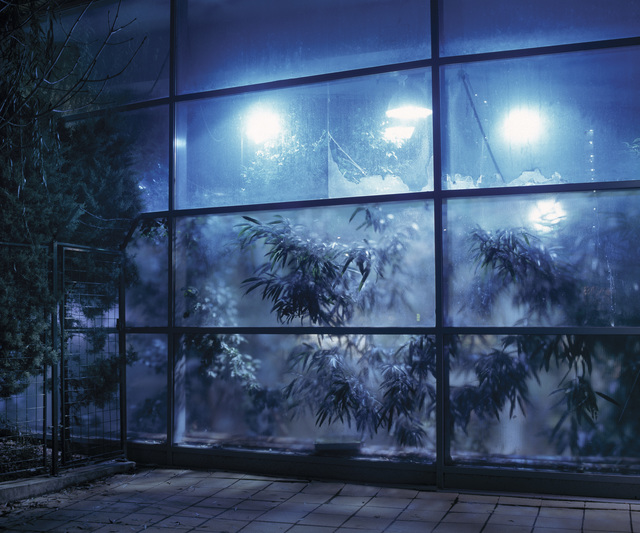 , 'Greenhouse in Campona shopping center (Camp series),' 2005, Faur Zsofi Gallery