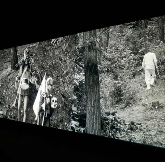 Park Chan-kyong, Citizen's Forest, 2016. Video (b&w), directional sound. 27 minutes. Courtesy of Art Sonje Center and the Taipei Biennial 2016.