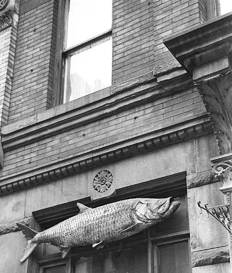 André Kertész, 'Fish Sign, New York City, NY', 1963, Robert Mann Gallery