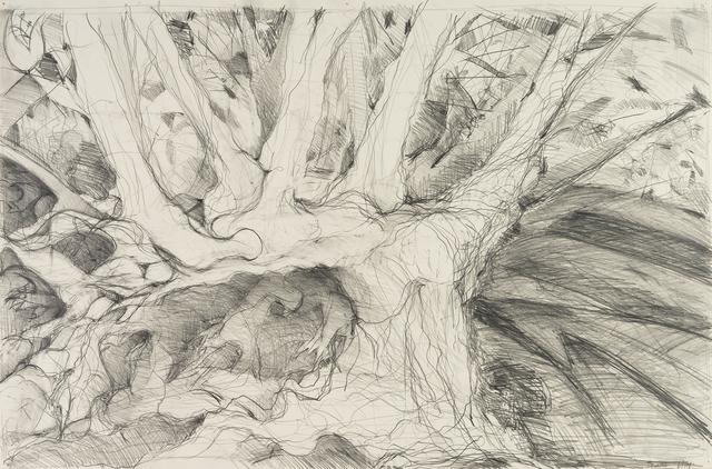 , 'Metamorphosis,' 2016, Denise Bibro Fine Art