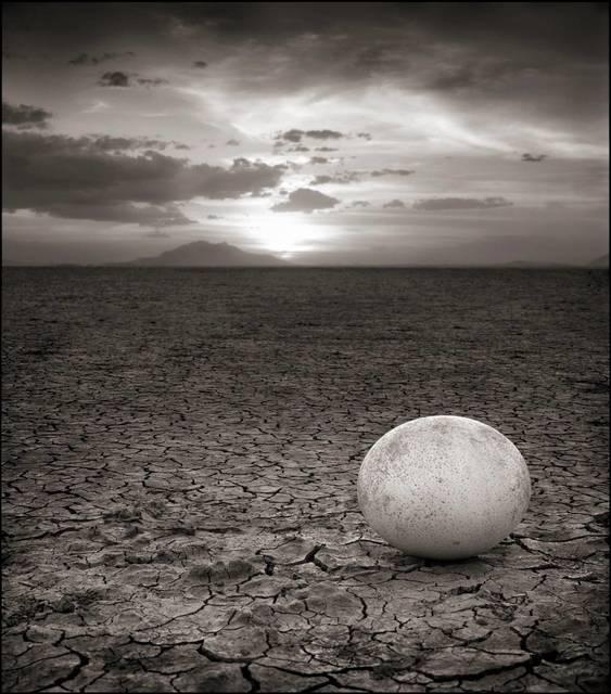 , 'Abandoned Ostrich Egg, Amboseli,' 2007, Bernheimer Fine Art