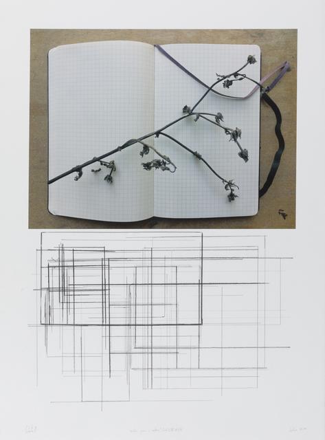 """, '""""notas para o outono"""" (col. I/V) #3/8,' 2018, Galeria Miguel Nabinho"""