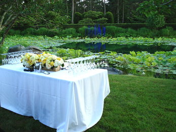 A Private Reception for 25 at LongHouse Reserve