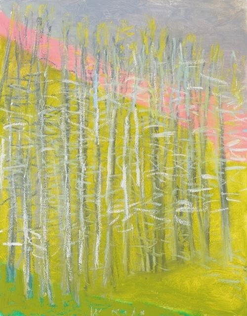 , 'Pink Diagonal,' 2014, Galerie de Bellefeuille