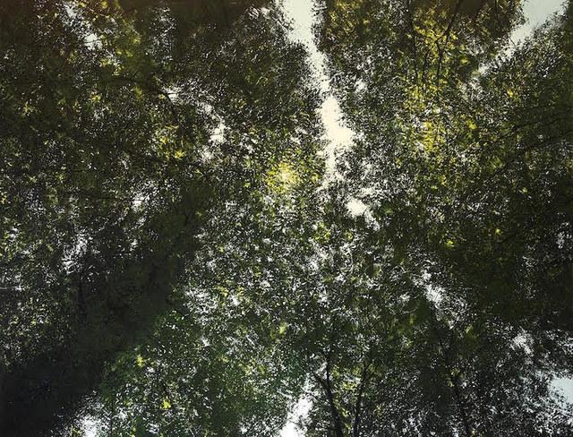 , 'Le Soleil et la Forêt,' , Hugo Galerie