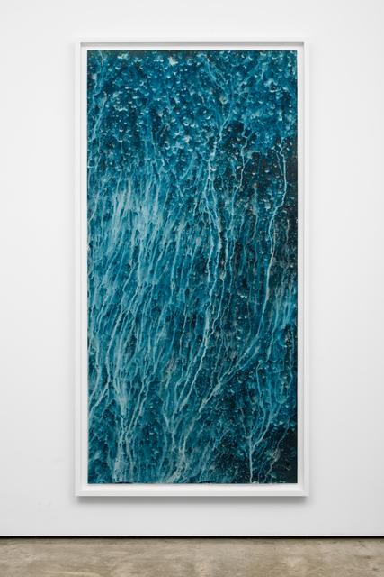 Meghann Riepenhoff, 'Ecotone #902 (Bainbridge Island, WA 07.02.20, Hillside and Understory Throughfall, Showers)', 2020, Photography, Dynamic cyanotype, Lora Reynolds Gallery