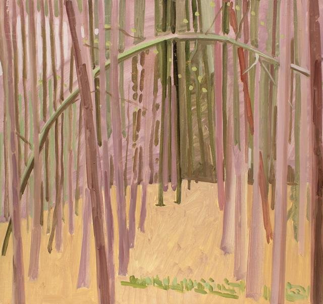 , 'Tillman's Ravine Woods,' 1979, Alexandre Gallery