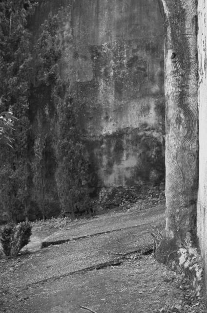 , 'Pasatiempo,' 2013, Benveniste Contemporary