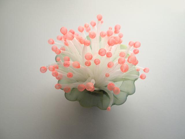 , 'Anemone Flower,' 2018, Micheko Galerie