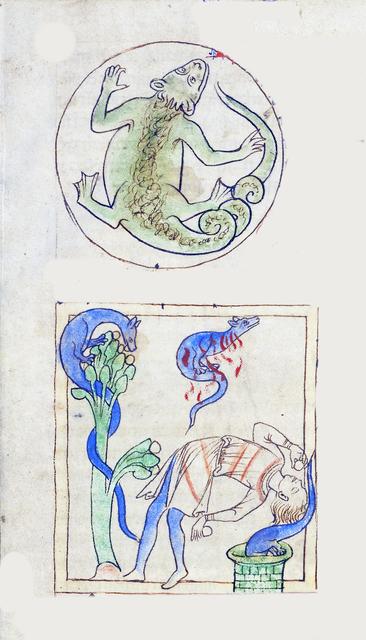 , 'A Lizard; Salamanders (detail), Northumberland Bestiary,' 1250-1260, Machamux