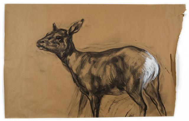 , 'Untitled (Deer 1),' 2009, Tayloe Piggott Gallery