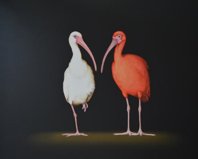, 'White Ibis, Scarlet Ibis,' 2018, Patricia Rovzar Gallery
