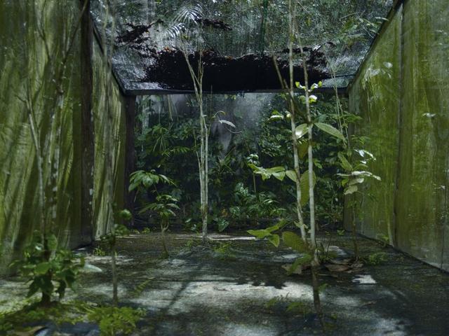 , 'The Moonlight Room,' 2010, Willas Contemporary