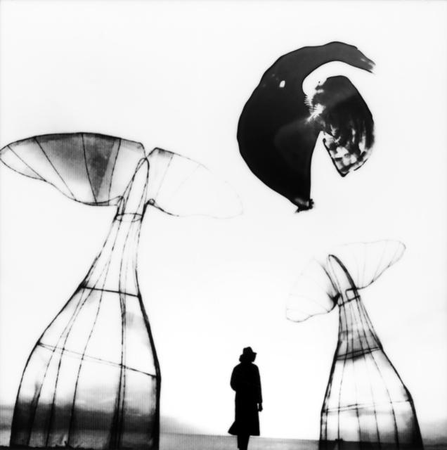 , 'Camogli ,' 2018, Glenda Cinquegrana Art Consulting