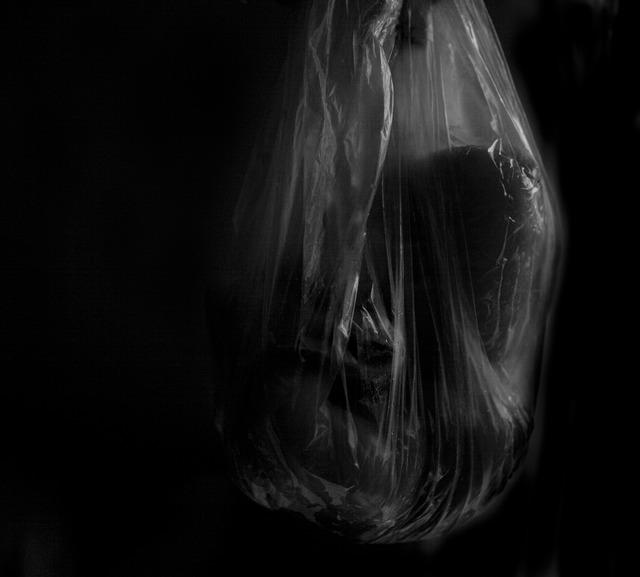 Gordana Manic, 'Série Híbridos #8', 2013, Central Galeria de Arte