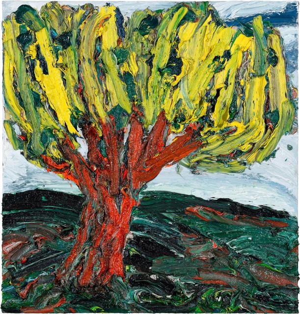 , 'Baum,' 2009, Bode Gallery