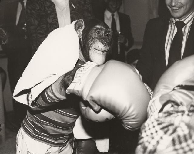 Andy Warhol, 'Chimpanzee', ca. 1985, Photography, Unique gelatin print, Christie's Warhol Sale