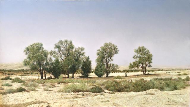, 'Israeli desert,' 2017, Dan Gallery
