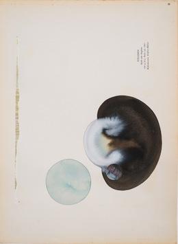 , 'Stilleben,' 2014, Galerie Karin Guenther