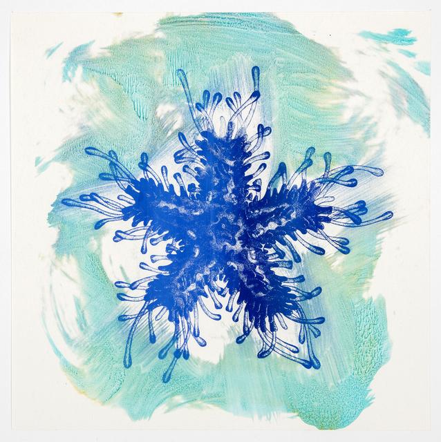, 'Asterias,' 2016, Planthouse