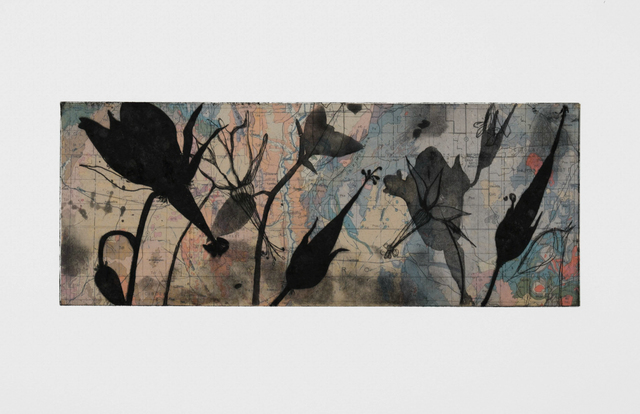 Suzi Davidoff, 'New Mexico Geology / Shooting Star Geranium', 2018, Chicago Art Source