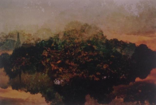 , 'Untitled,' 2012, Gitana Rosa Gallery