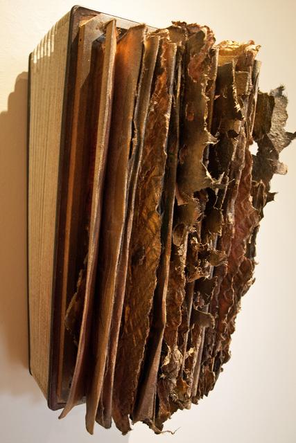 , 'Accordian Book II,' , ViVO Contemporary