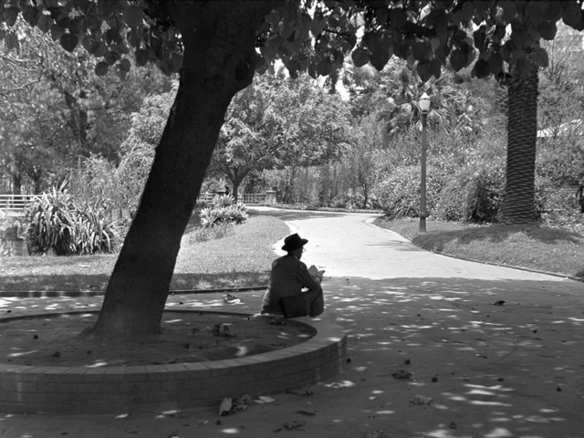 , 'Republic Square 1948,' vintage, Utópica
