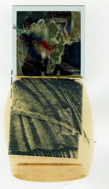 """, '""""A Niépce""""   Polaroid,' 1982, Be-hold"""
