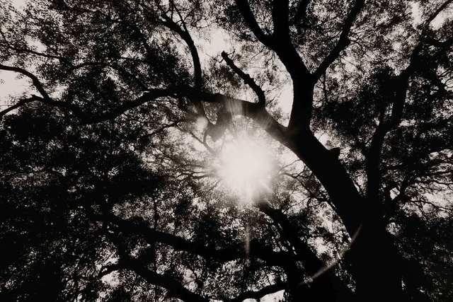 Hitoshi Fugo, 'BLACKOUT #78', 1980 -printed 2004, Photography, Gelatin silver print, MIYAKO YOSHINAGA