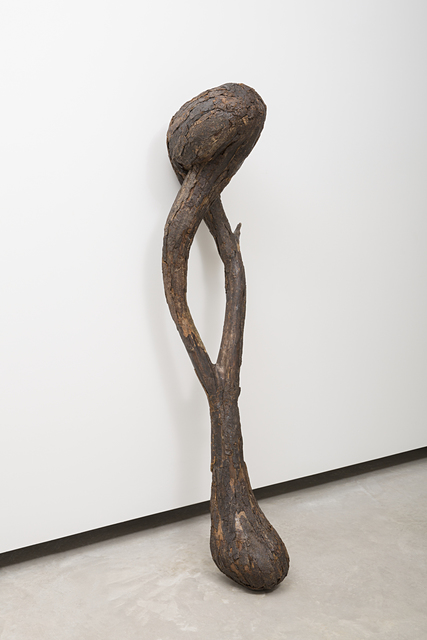 Henrique Oliveira, 'Pau-osso', 2016, Galeria Millan