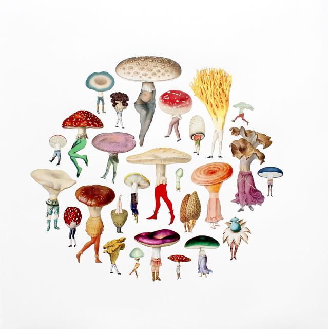 , 'Mushroom Patch,' 2017, Sunne Savage Gallery