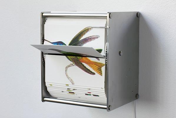 , 'Ornithology I,' 2015, DANESE/COREY