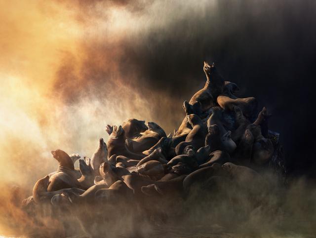 , 'Untitled #188,' 2015, Yossi Milo Gallery