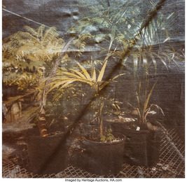 Untitled (two works from the Hothouse Series)