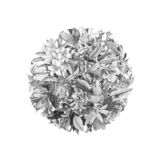 , 'Bola de flores,' 2015, PIEDRAS