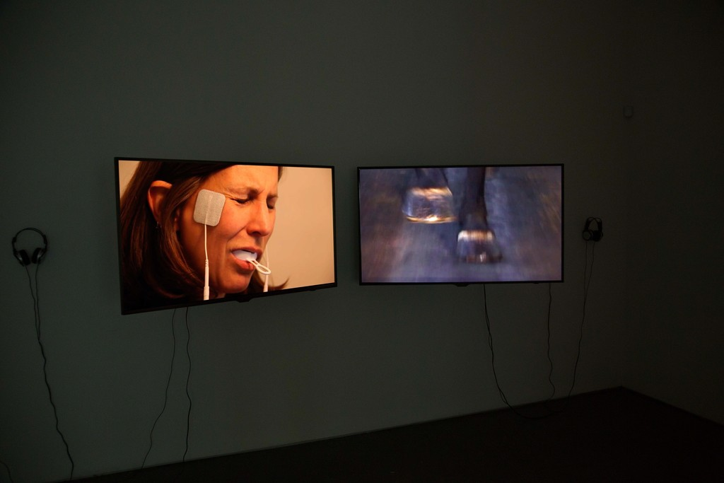 Installation view: Janet Biggs, within touching distance, 2015. Cristin Tierney Gallery, New York.