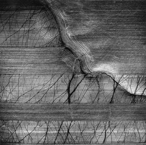 , 'Cow Tracks, Forsyth, Montana,' 1967-printed later, Scott Nichols Gallery