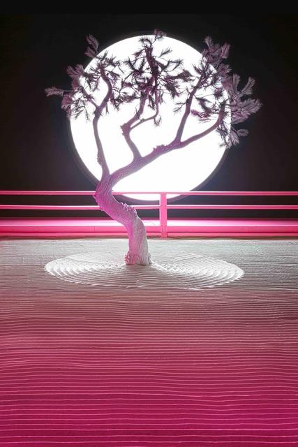 , 'Lunar Garden installation,' 2019, Galerie Ron Mandos